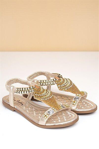 Pierre Cardin Kadın Altın Günlük Sandalet Pc-6526