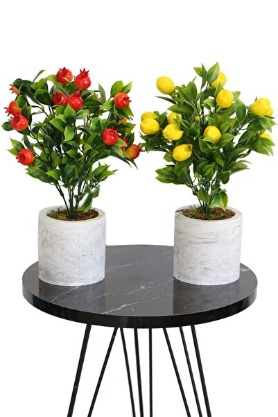 Yapay Çiçek Deposu Beton Saksıda Mini Nar Ve Limon Ağacı 2li Set
