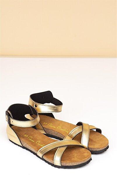 Pierre Cardin Pc-5081 Altın Kadın Terlik