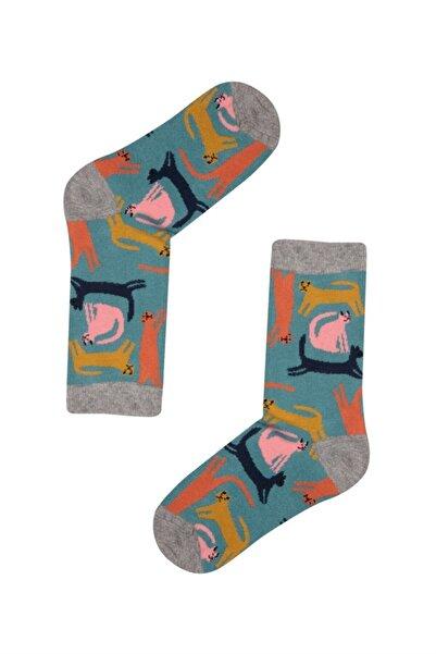 John Frank Kadın Gri Fun Socks Uzun Çorap