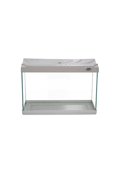 Kanki Pet 30 Cm Renkli Kapak Mini Akvaryum Kp3018 Beyaz