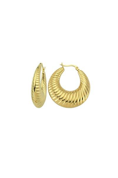 Luzdemia Stripe Hoop Earring - Gold