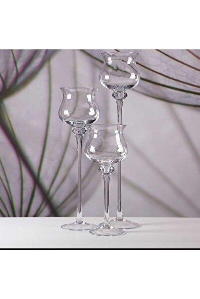 GLASSY 3'lü Aledin Cam Dekoratif Vazo Seti ( 40-45-70 Cm Yükseklik 17 Cm Çap )
