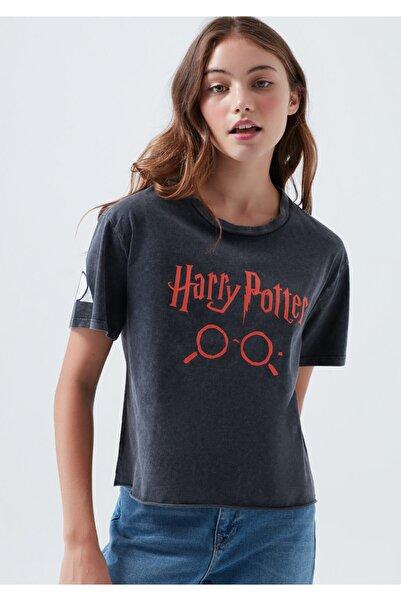 Mavi Harry Potter Baskılı Siyah Tişört
