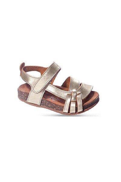 Sanbe 511 N 2007 26-30 Deri Sandalet-dore