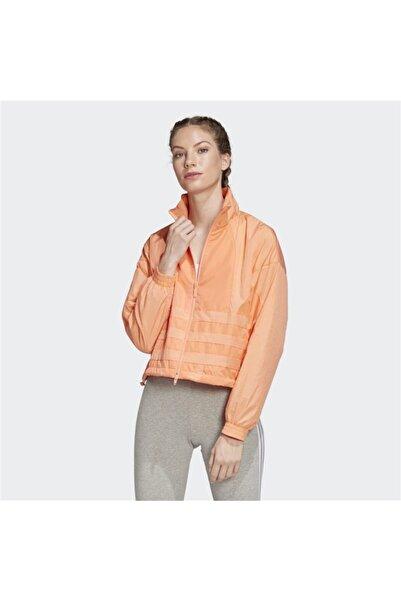adidas Fm2582 Lrg Logo Tt Kadın Sweatshirt Giyim
