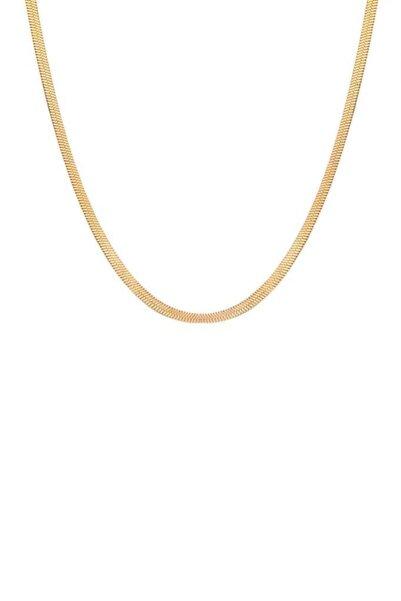 Toms Jewelry Kadın Gold Yassı Çelik Zincir Kolye TMJ30195-295-G