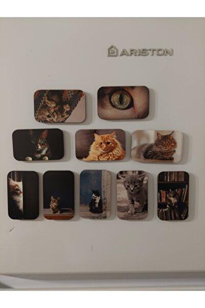 LAZER DÜNYASI 10 Adet Ahşap Kedi Resimli Buzdolabı Magneti (1)
