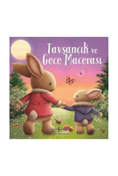 TÜRKİYE İŞ BANKASI KÜLTÜR YAYINLARI Tavşancık ve Gece Macerası