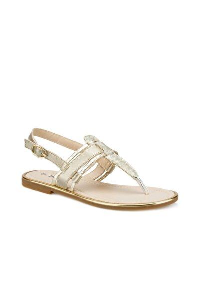 Polaris 315317.Z Altın Kadın Sandalet 100507469