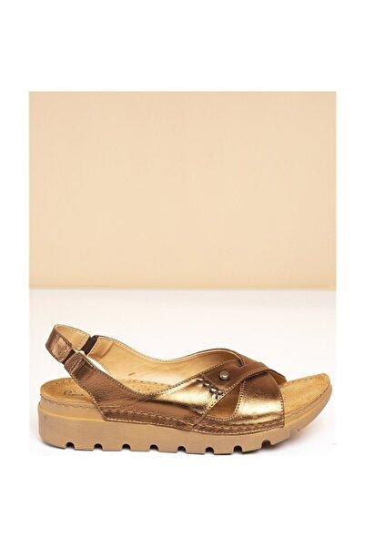 Pierre Cardin Kadın Bronz Sandalet