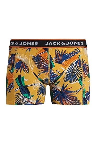 Jack & Jones Jack Jones Summer Anımals Boxer 12171647
