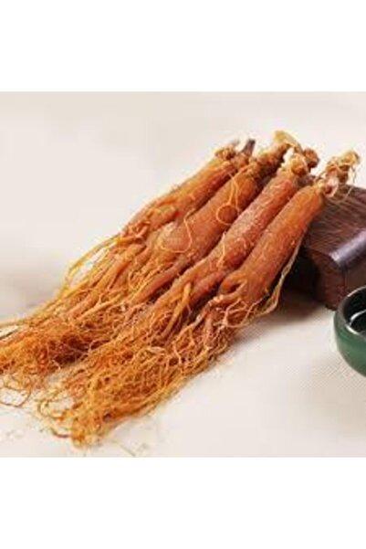 Zencefil Organik Kırmızı Kore Ginseng Kökü 100 G Orijinal Kore Ginseng Kökü