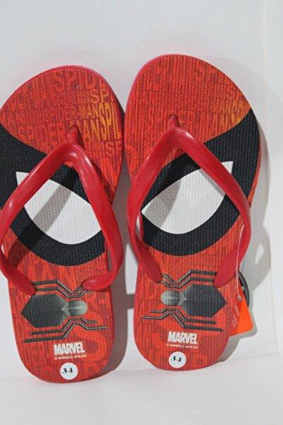 MARVEL Spiderman Terlik