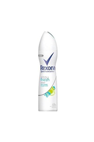 Roxanne Deodorant Sprey Linen Dry 150 ml