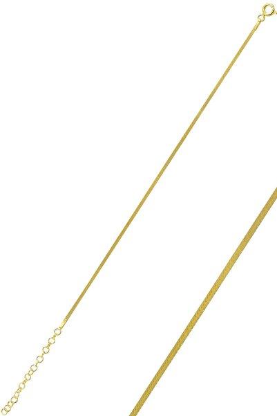 Söğütlü Silver Gümüş Altın Rengi 1,4 Mm Kalınlığında Italyan Yassı Bileklik Sgtl10096gold