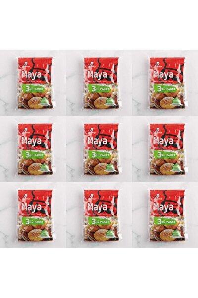 Pakmaya Glutensiz Instant Kuru Maya 3x10 gr 9 Paket