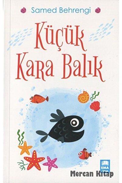 Ema Kitap Küçük Kara Balık