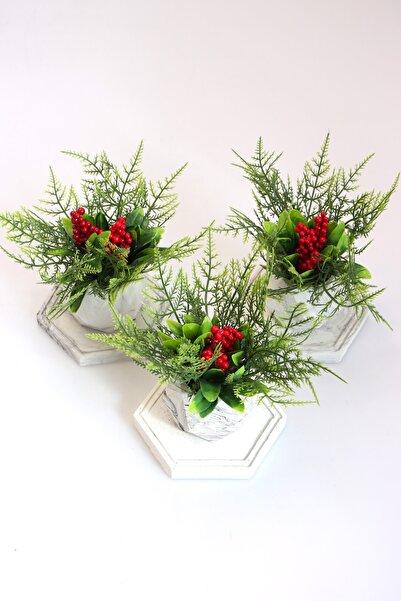 Yapay Çiçek Deposu Tepsili Beton Saksıda 3lü Yeni Yıl Kokina Seti