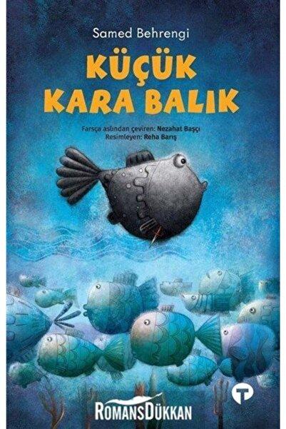 Turkuvaz Kitap Küçük Kara Balık