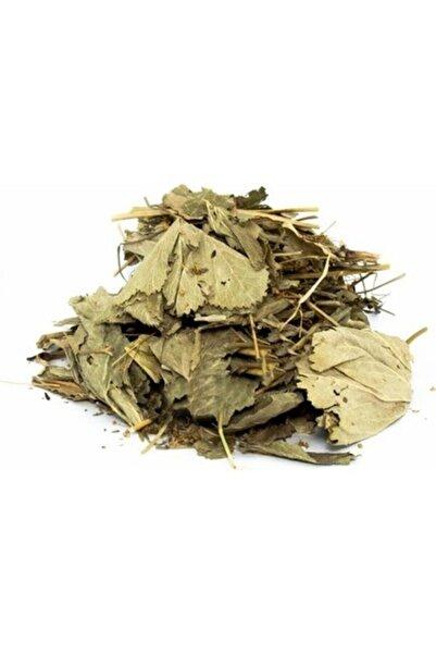 Lokman Herbal Vital Aslan Pencesi (testere Dişli) 100 Gr