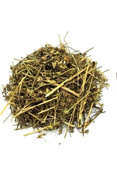 Lokman Herbal Vital Çoban Çantası (capsella Bursa-pastoris) 250 Gr