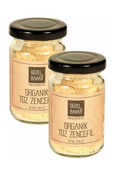 Güzel Gıda Güzel Gida Organik Toz Zencefil 30 G 2'li