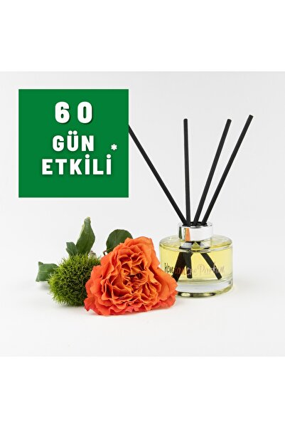 Konsantre Parfüm Baccarat Rouge 540 Extrait Oda Kokusu 165ml