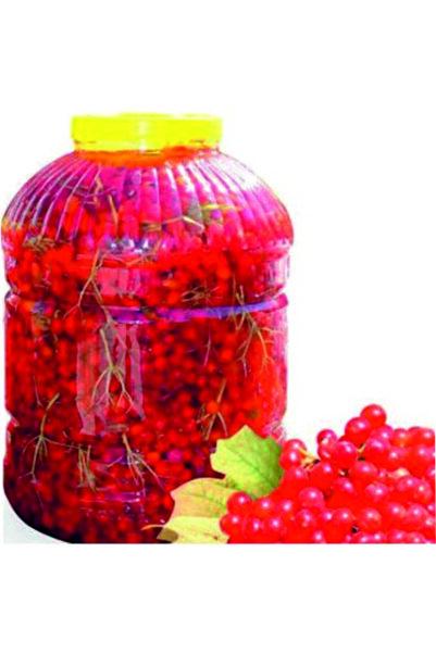 Gilaburu Meyvesi 5 l