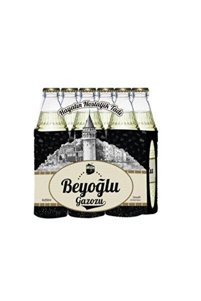 Beyoğlu Gazoz Zencefil 24x250 ml