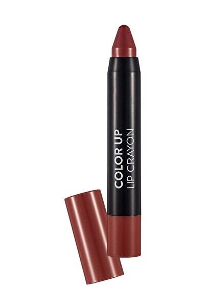 Color Up Lip Crayon Karamel Ruj 010 8690604503377