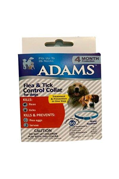 Adams Pire Kene Ve Dış Parazit Köpek Boyun Tasması