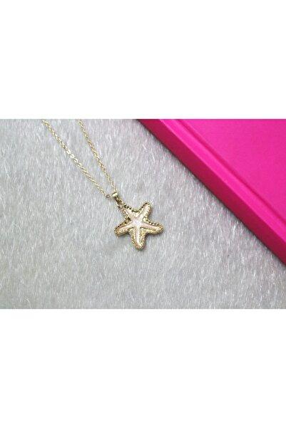 Accessories Kadın Gold Deniz Yıldızı Bijuteri Kolye