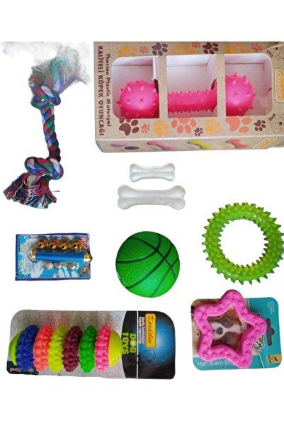 Pet Pretty Küçük-orta Irk Oyun Ve Diş Kaşıma Seti 7'li Paket (halka-simit-diş Ipi-top,lazer,dambıl V.b)