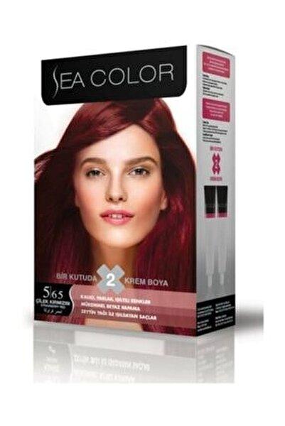 2'li Saç Boyası 5,65 Çilek Kızılı