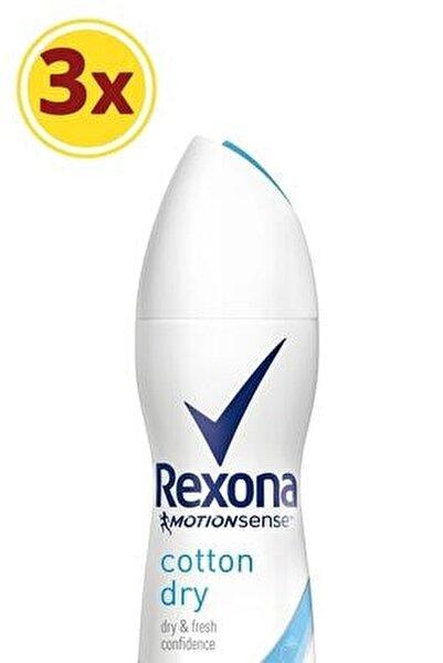 Kadın Deodorant Sprey Cotton Dry 150 ml X3