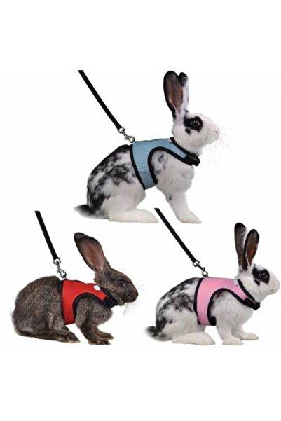 Ozzy Tavşan Dışarıda Gezdirme Tasması