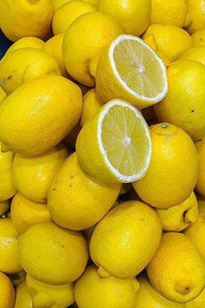 ASELYA Mersin Kütdiken Cinsi Yerli Limon Net 2 kg Paket