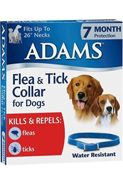 Adams Köpek Pire Ve Kene Tasması 7 Ay Etkili Suya Dayanıklı