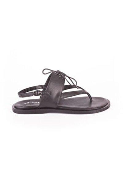 Divum Sandalet
