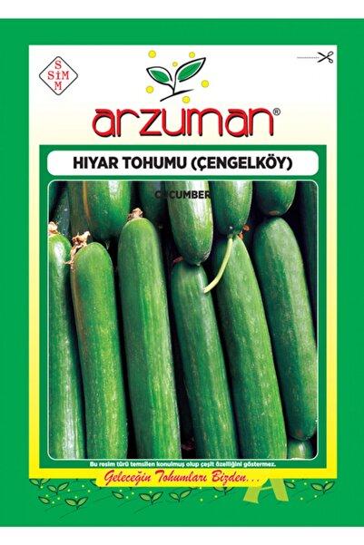 Arzuman Tohum Salatalık Tohumu Çengelköy Tipi