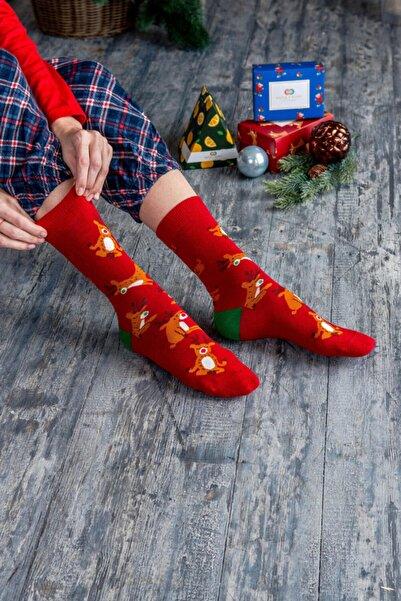 Katia&Bony Christmas Art Dizayn Soket Çorap - Kırmızı