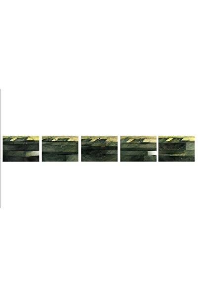 Elif Köse Zaman Mekân Doğa Ölüm 3, 50x70x13, Tuval Üzerine Foto Enstalasyon