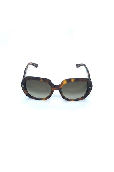 ETRO Kadın Güneş Gözlüğü Et6198s 214