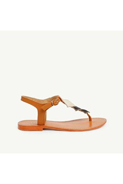 Yargıcı Kadın Bej Deri Sandalet 9YKAY4024X