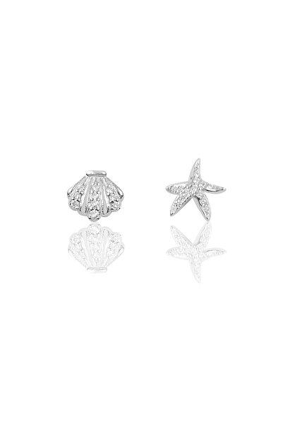 Gümüş Deniz Yıldızı Ve Midye Modeli Kombin Küpe
