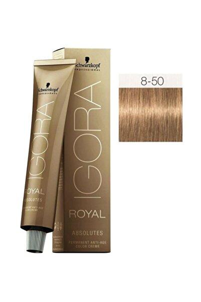 Saç Boyası -Royal Absolutes 8-50 Açık Kumral-Doğal Altın 4045787282559
