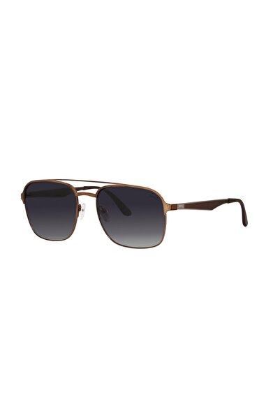 Slazenger Kadın Siyah Güneş Gözlüğü 6512c4