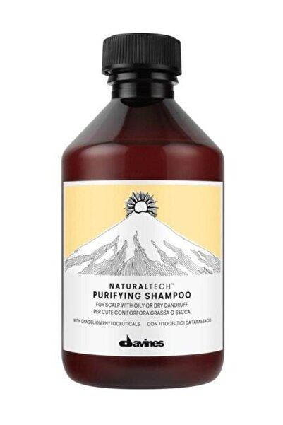 Kepek Arındırıcı Şampuan - Purifying Shampoo 250 ml. 8004608236580