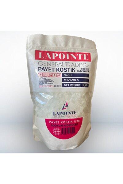Lapointe Payet Kostik Soda 1 kg + eldiven